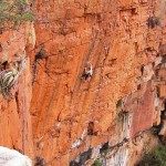 Andrew Pedley on Godzilla (31) at the God No! Wall, Waterval Boven Photo by Naureen Goheer