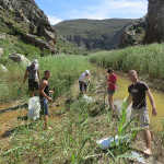 The team laying sandbags to divert the river above Waterworld in Bad Kloof, Montagu
