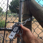 Skoorsteenskop, Hout Bay access details