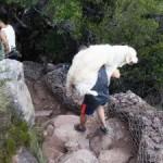 Hiker carries dog