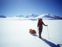 south georgia island sled expedtion