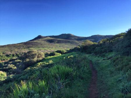 Kalk Bay Hike