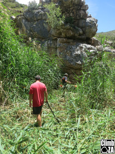 Justin with the Bush Cutter in Bad Kloof