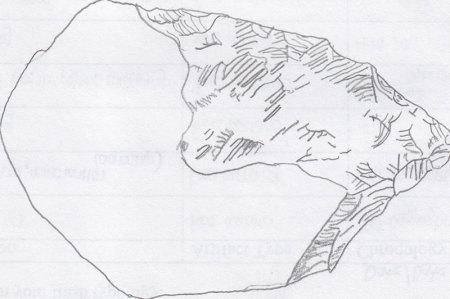 Stone Sketch