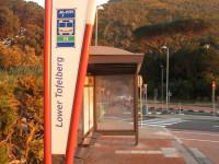 MyCiTi bus Table Mountain