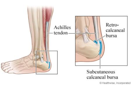 foot anatomy rock climber