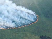 Mount Kenya Fire