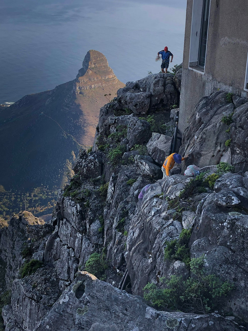 Cheap Car Finder >> Table Mountain Ledge Cleanup Report 2019 - Climb ZA - Rock